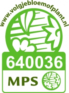 MPS, site logo NL